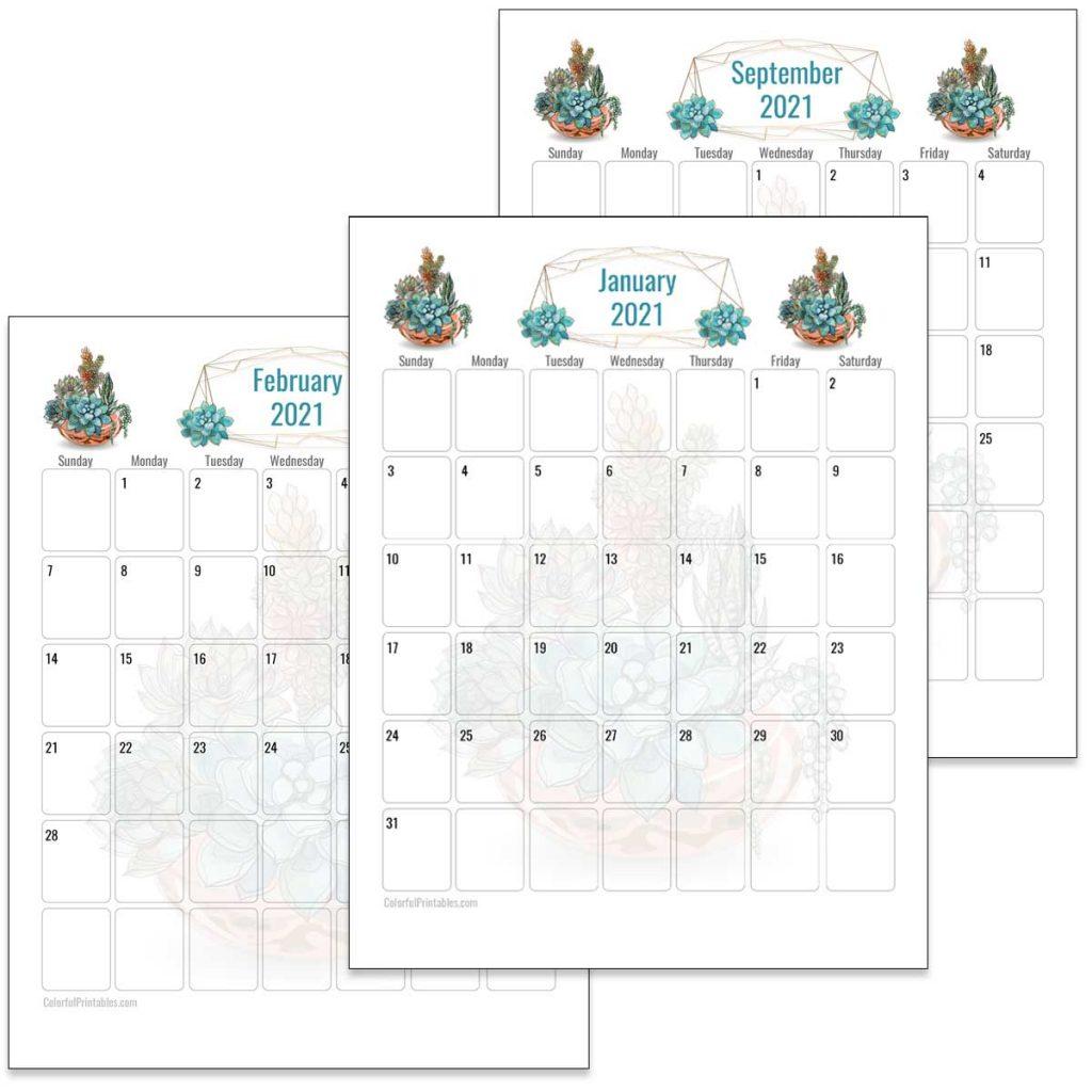 Succulents Calendar