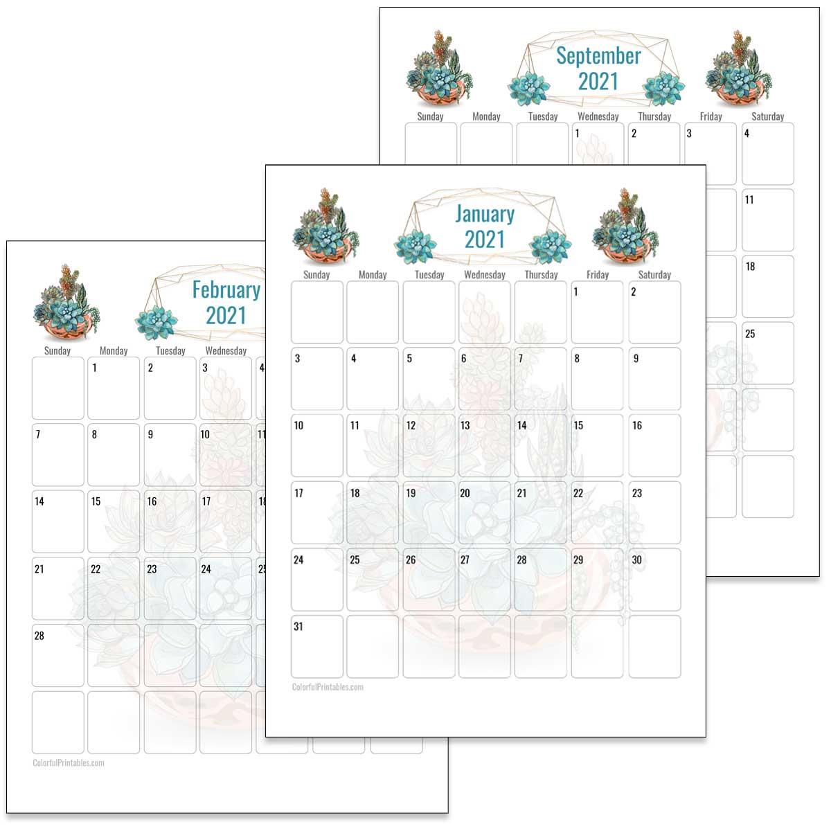 Succulent calendar for 2021
